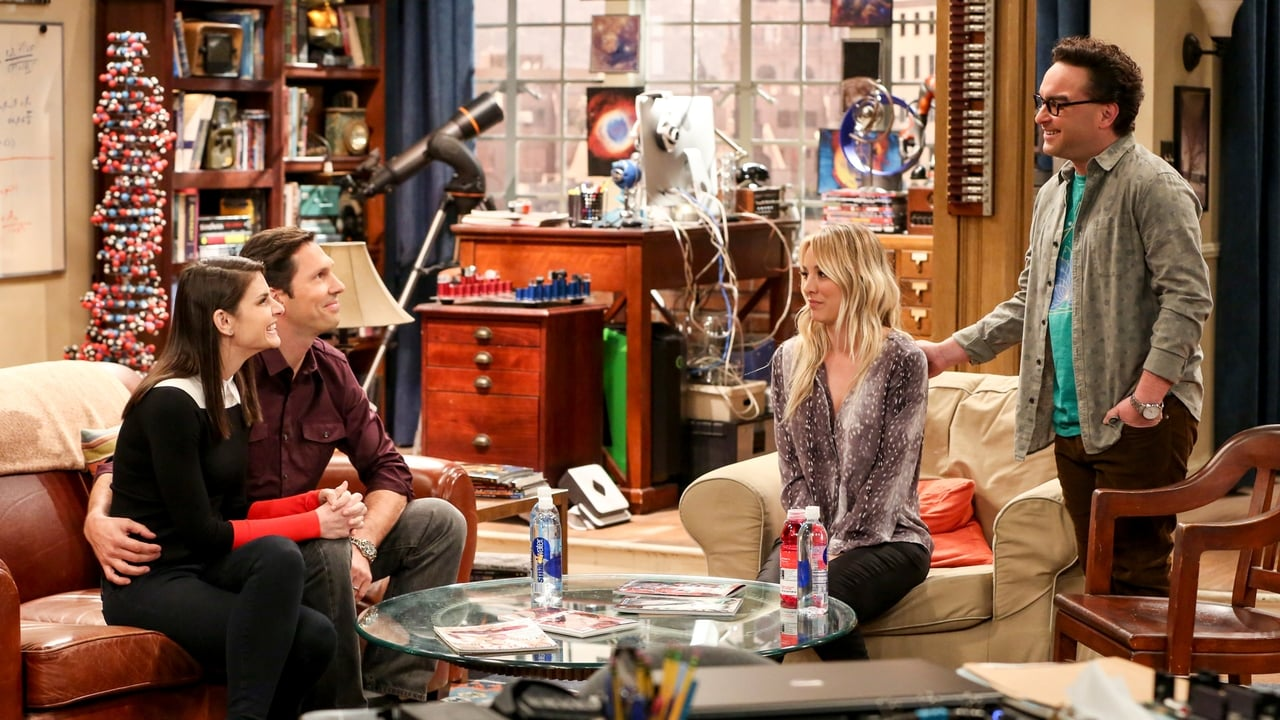 The Big Bang Theory Episode: The Donation Oscillation