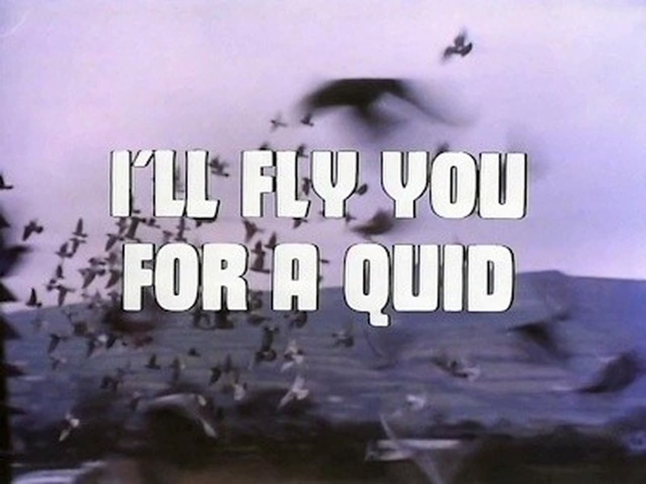 Ill Fly You for a Quid
