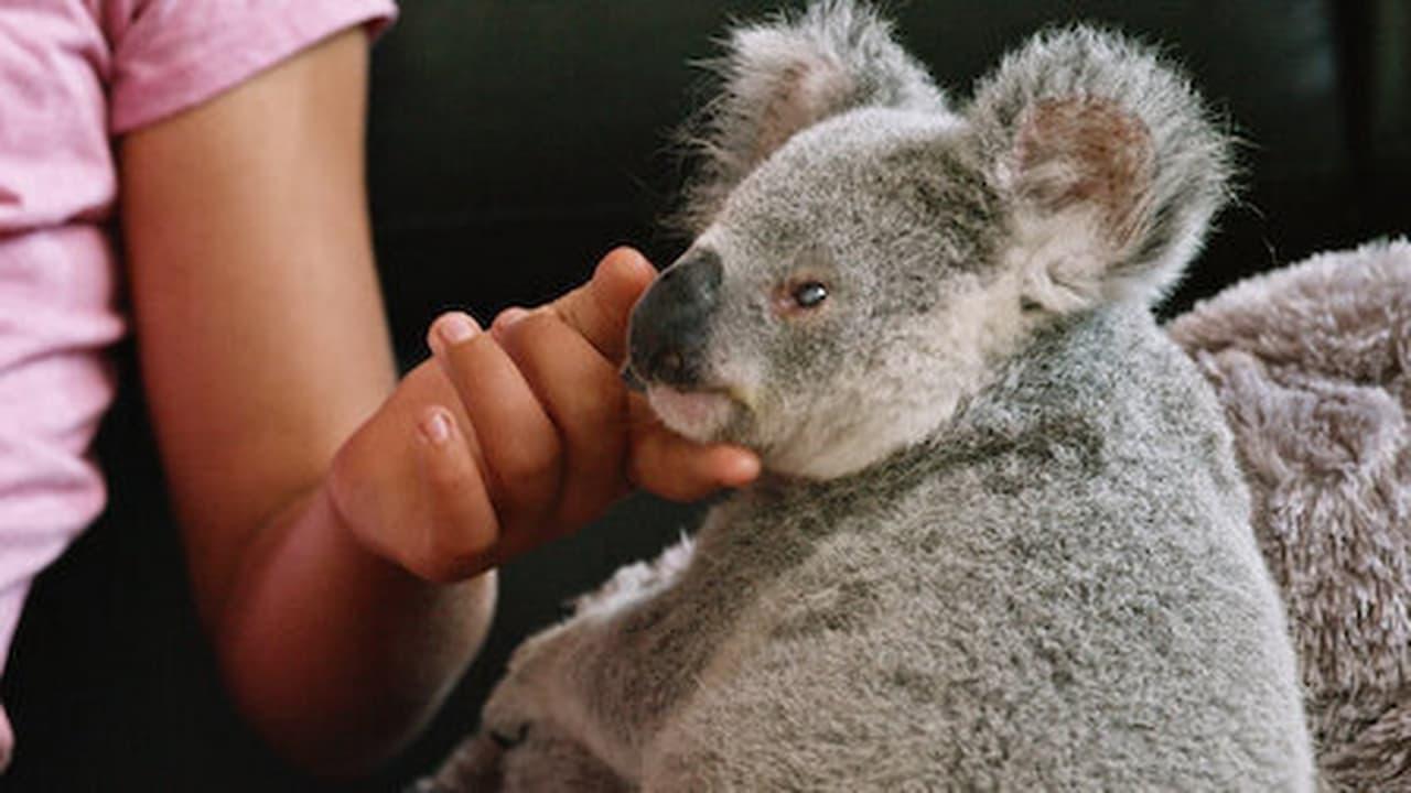 Izzys Koala World Episode: Episode 6
