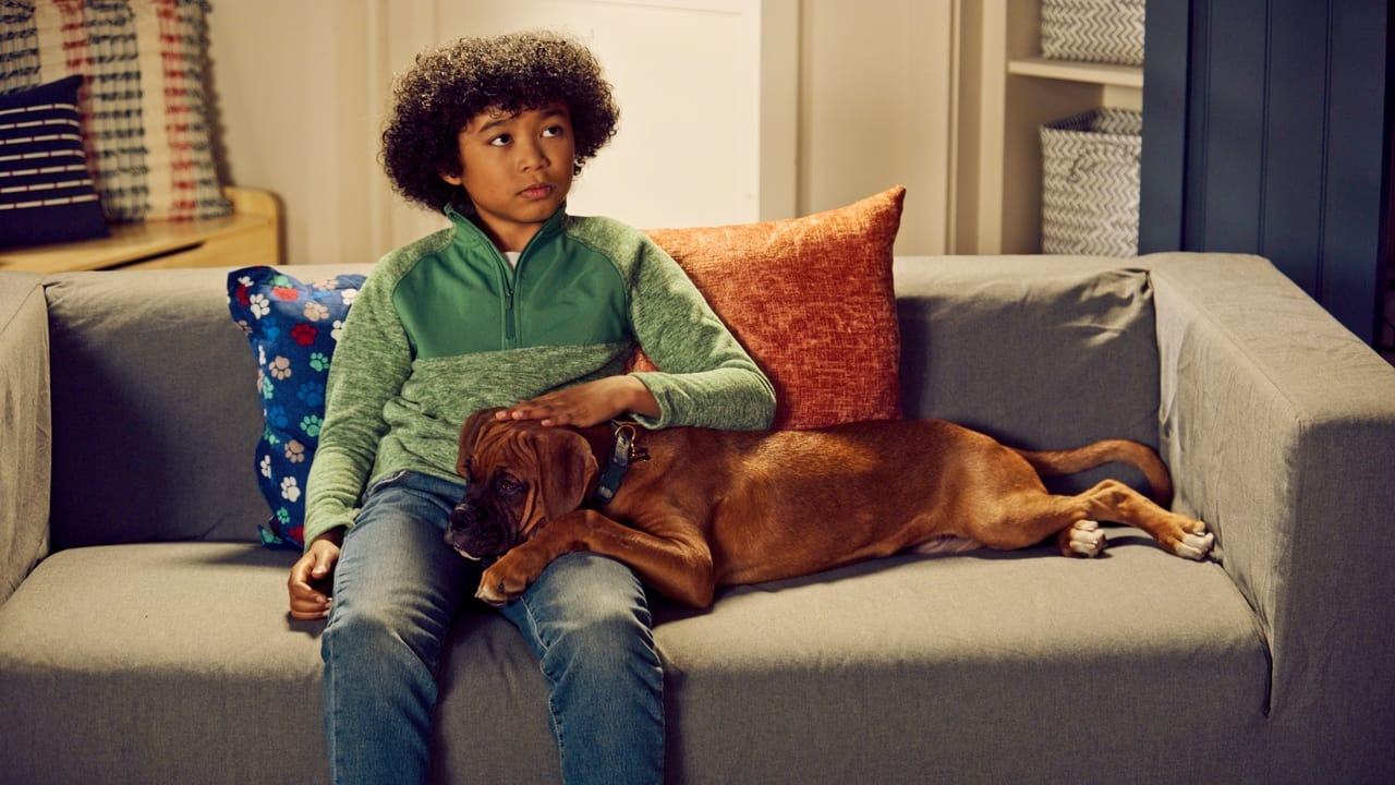 Puppy Place Episode: Jack