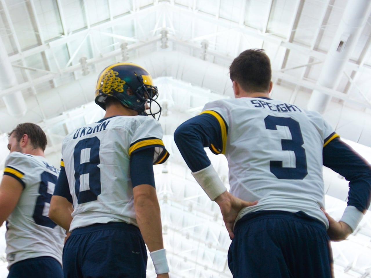 All or Nothing The Michigan Wolverines Episode: FiftyOne Percent
