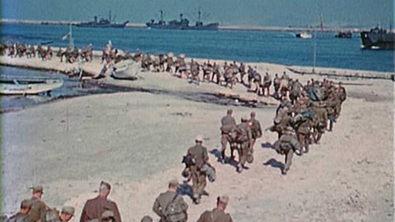Apocalypse The Second World War Episode: Inferno 19441945