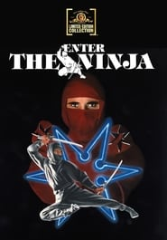 Streaming sources for Enter the Ninja