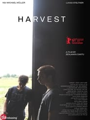 Streaming sources for Harvest