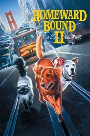 Streaming sources for Homeward Bound II Lost in San Francisco