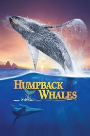 Streaming sources for Humpback Whales