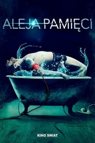 Streaming sources for Memory Lane