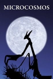 Streaming sources for Microcosmos