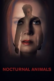 Streaming sources for Nocturnal Animals