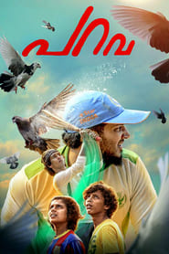 Streaming sources for Parava