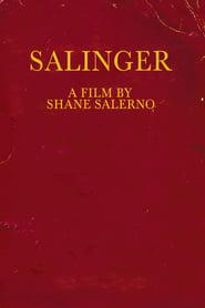 Streaming sources for Salinger