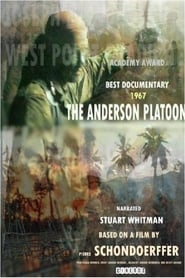 Streaming sources for The Anderson Platoon