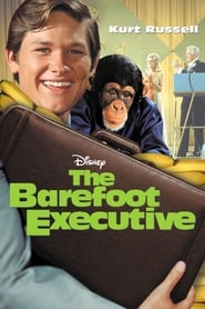 Streaming sources for The Barefoot Executive