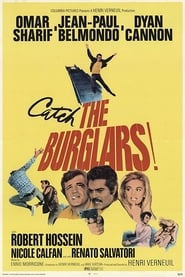 Streaming sources for The Burglars