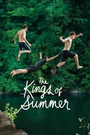 Streaming sources for The Kings of Summer