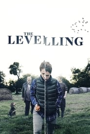 Streaming sources for The Levelling