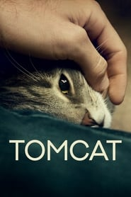 Streaming sources for Tomcat