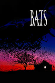 Streaming sources for Bats