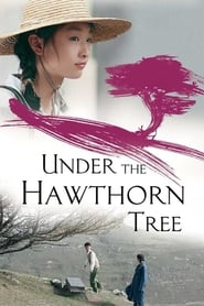 Streaming sources for Under the Hawthorn Tree