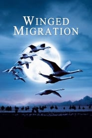 Streaming sources for Winged Migration
