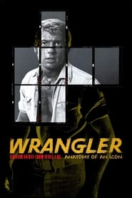 Streaming sources for Wrangler Anatomy of an Icon