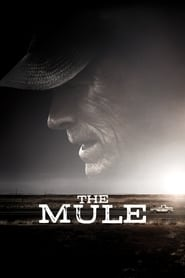 Streaming sources for The Mule