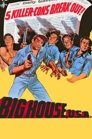 Streaming sources for Big House USA