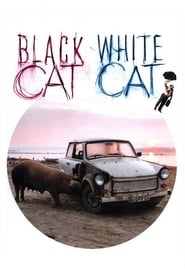 Streaming sources for Black Cat White Cat