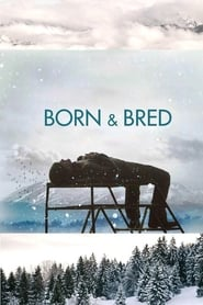 Streaming sources for Born and Bred