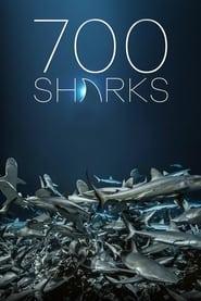 Streaming sources for 700 requins dans la nuit