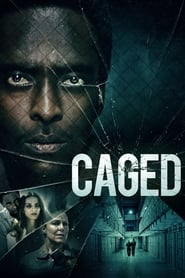 Streaming sources for Caged