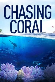 Streaming sources for Chasing Coral
