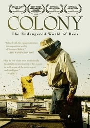 Streaming sources for Colony
