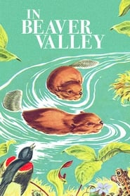 Streaming sources for Beaver Valley