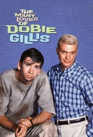 Streaming sources for The Many Loves of Dobie Gillis