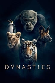 Streaming sources for Dynasties