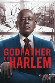 Godfather of Harlem Poster