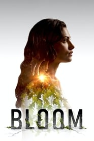 Streaming sources for Bloom