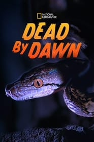 Streaming sources for Dead By Dawn