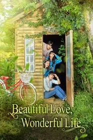 Streaming sources for Beautiful Love Wonderful Life