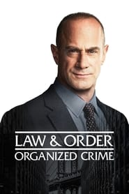 Law Order Organized Crime Poster