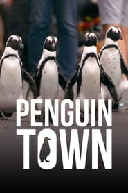 Streaming sources for Penguin Town