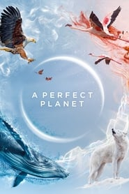 Streaming sources for A Perfect Planet