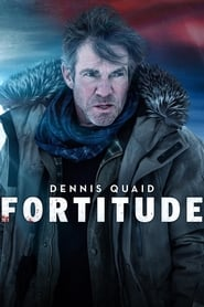 Streaming sources for Fortitude