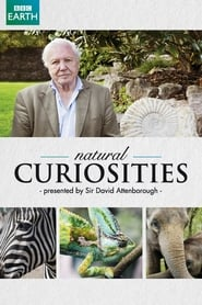Streaming sources for David Attenboroughs Natural Curiosities