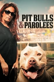 Streaming sources for Pit Bulls and Parolees