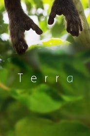 Streaming sources for Terra