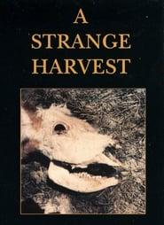 Streaming sources for A Strange Harvest