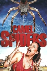 Streaming sources for Camel Spiders