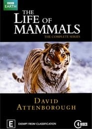 Streaming sources for The Life of Mammals
